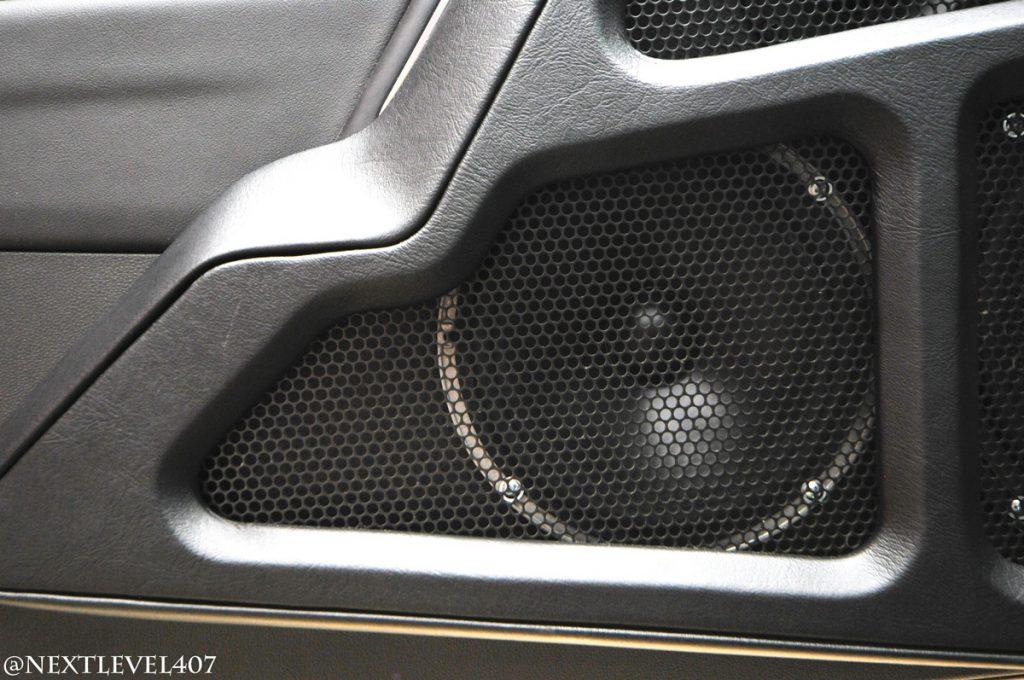 Custom Stereo Door Speaker